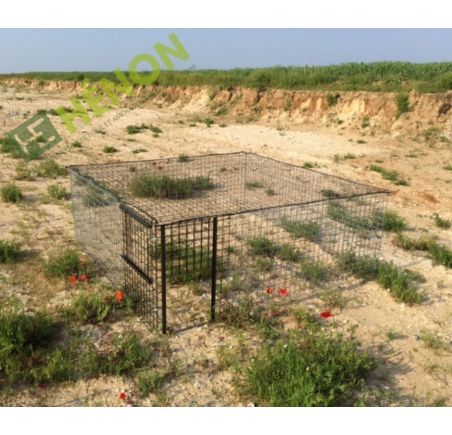 cage faisan