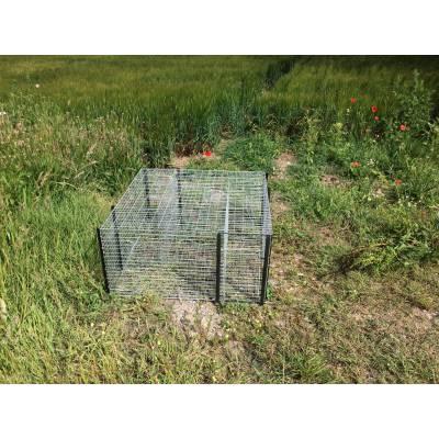 cage a corbeau