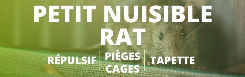 Piege a rat - HenonShop