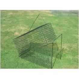 Cage à renard 1entrée avec appelant
